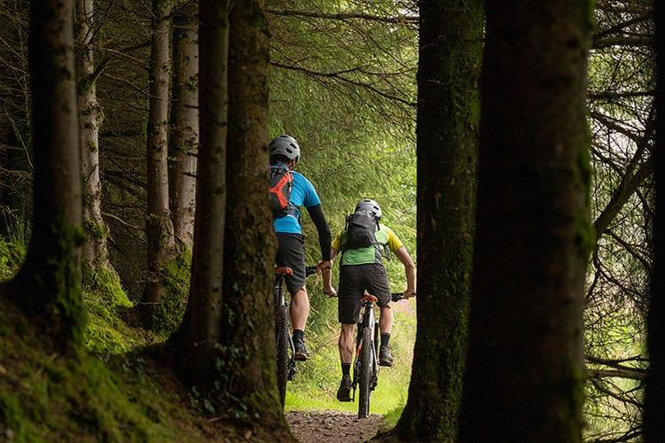 Rostrevor Red MTB Trail