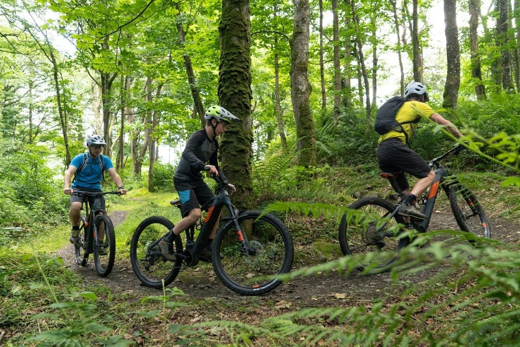 Three mountain bikers in the forest the the Red Trail in Castlewellan Forest Park near the Mourne Mountains.